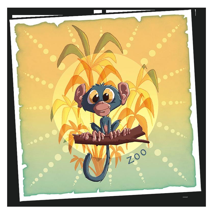 Singe – Zoo